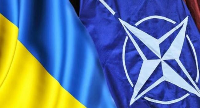 В ближайшие 20 лет вступление в НАТО Украине не грозит: эксперт назвал причины