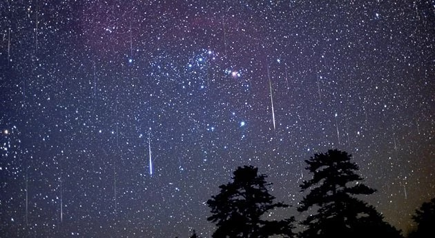 В ноябре украинцы могут наблюдать впечатляющие метеоритные дожди: названы даты